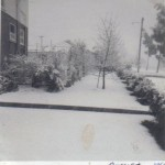 Snow in Kootara Cres Narrabundah, Aug 1965 - Graeme McKie