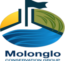 TWO UPCOMING WETLANDS EVENTS
